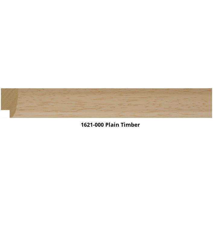 1621 Liner