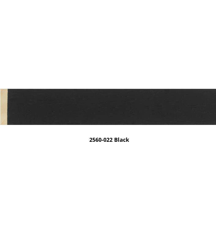 2560-022black