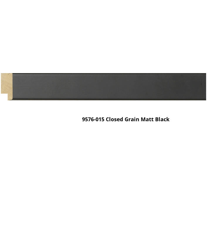 9576 Lacquer Finish Moulding