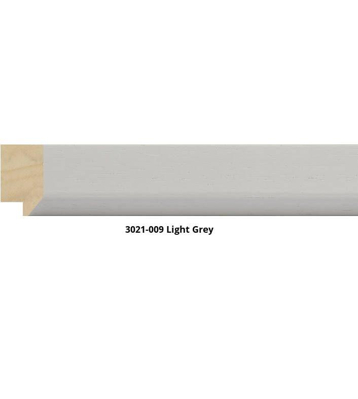 3021-009-light-grey